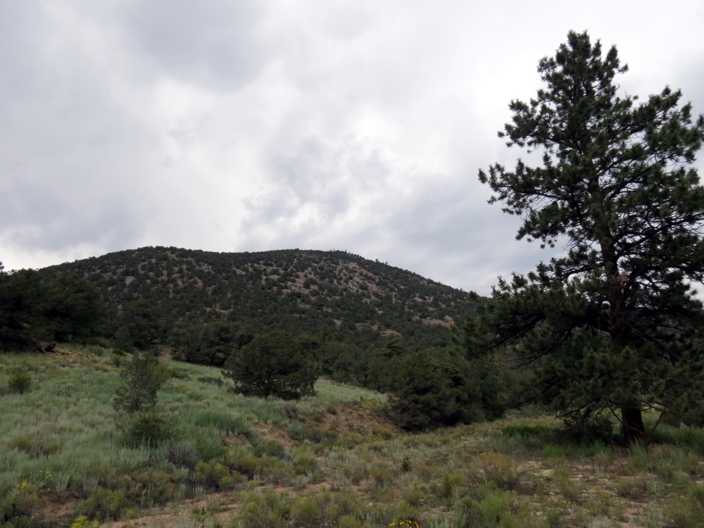 Bald Mountain (W0/SP-115)
